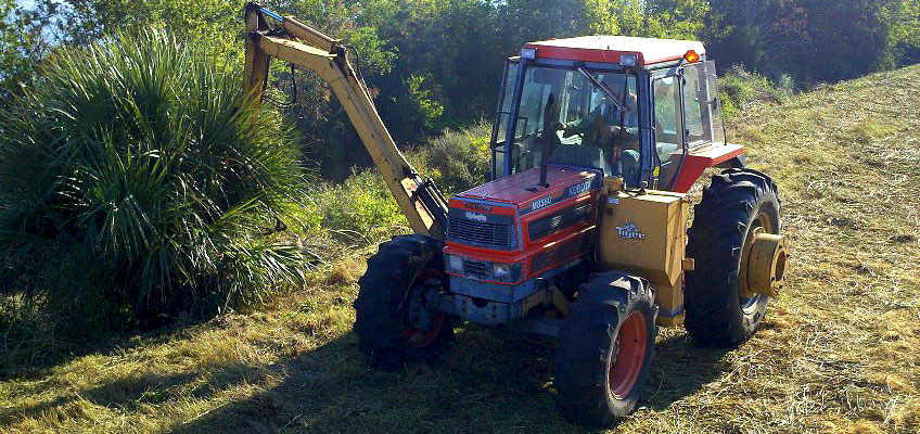 Cumberland offers Heavy Duty Bush Hogging services