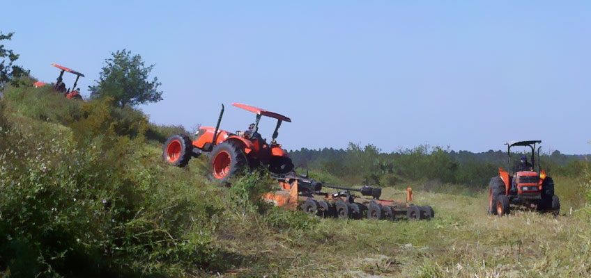 The Cumberland Land Clearing team at work