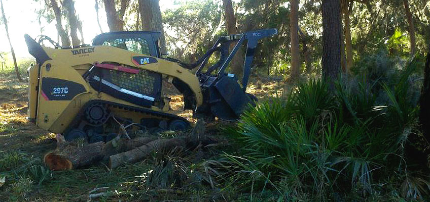 Cumberland Landclearing Services with bobcat