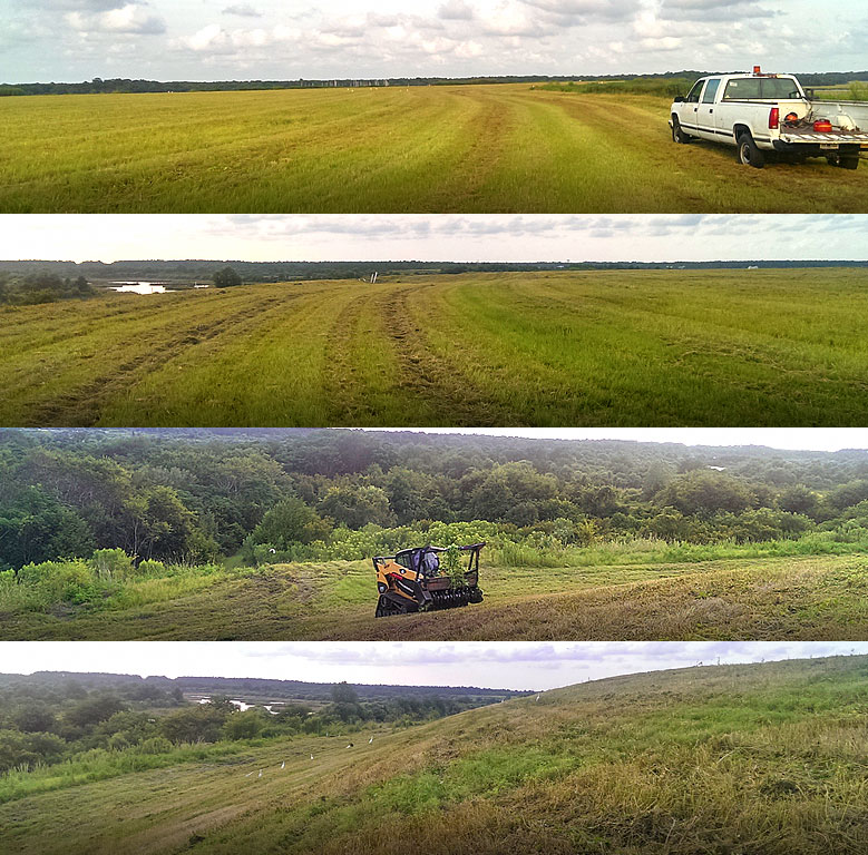 Mowing and Clearing project after completion